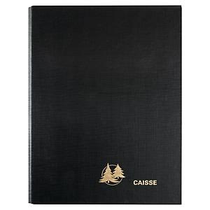 Reliure pour agenda perpétuel de caisse Exacompta - 24 x 16 cm - vert/gris