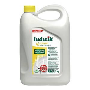 Płyn do mycia naczyń LUDWIK cytrynowy, 5 kg