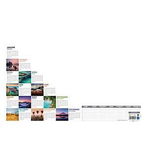 Sous-mains Bouchut Mosaïque calendrier perpétuel - 38,5 x 54 cm - blanc