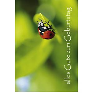 Carte d anniversaire Art Bula, 175x122 mm, allemand