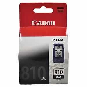 Canon PG-810 Inkjet Cartridge - Black