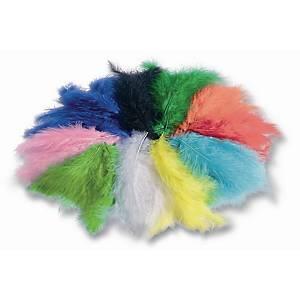 Plumes couleurs assorties - le paquet de 100 gr
