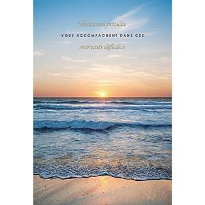 Greeting cards condolences fr - pack of 6