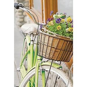 Wenskaarten bloemen in fietsmand, pak van 6 kaarten