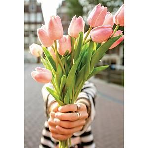 Wenskaart tulpen zonder tekst - pak van 6