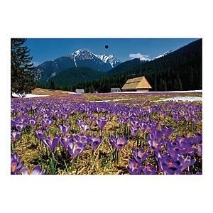 Kalendarz trójdzielny CRUX, wypukły, Polska