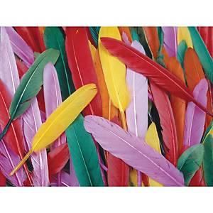 Colorations plumes 10 cm couleurs assorties - le paquet de 145