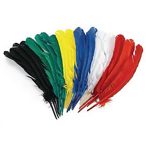 PK24 COLORATIONS FEATHERS 30CM ASSORTED