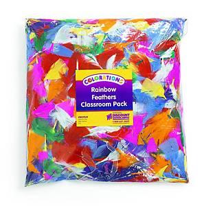 Colorations plumes arc-en-ciel paquet classe de 225 gr