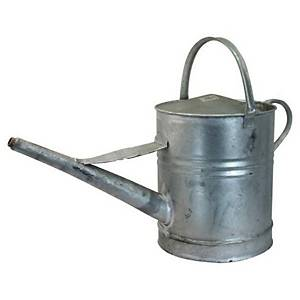Galvanised Watering Can2 Gallon