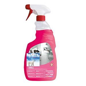 Detergente multiuso Sanitec Sanialc 750 ml