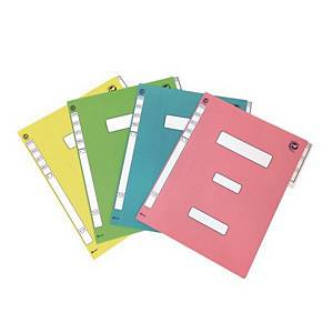 PK10 YH YF6194 GOVE DOC PP FILE A4 PINK