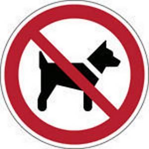 Brady P021 verbodsteken honden of dieren verboden, zelfklevend, 100 mm, per stuk