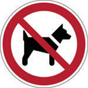 Brady self adhesive pictogram P021 No animals 200mm