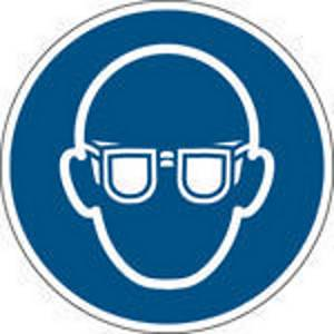 Brady PP pictogram M004 Wear eye protection 100mm