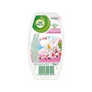 Désodorisant Airwick, Fleurs d été, bloc de 150g