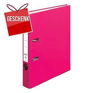 Herlitz Q.file Standardordner, Rückenbreite 5 cm, rosa