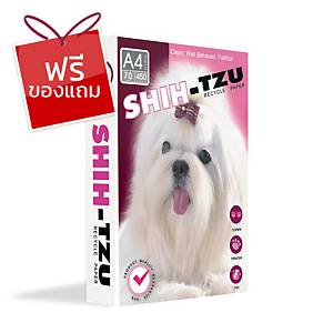 SHIH-TZU กระดาษถ่ายเอกสาร รีไชเคิล A4 70 แกรม สีขาว 450 แผ่น/รีม - 5 รีม/กล่อง