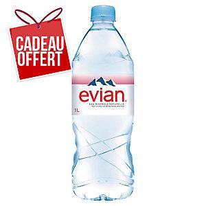 Eau Evian 1 L - carton de 12 bouteilles