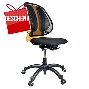 Fellowes Office Suites Mesh Rückenstütze, schwarz