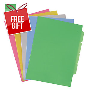 TRANSPARENT HOLDER WITH 4 DIVIDERS A4 GREEN