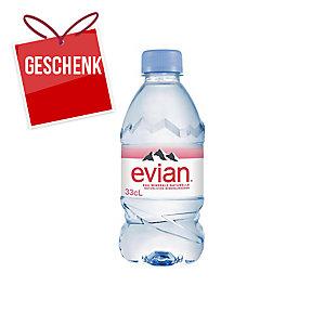 Evian Mineralwasser ohne Kohlensäure 33 cl, Packung à 24 Flaschen