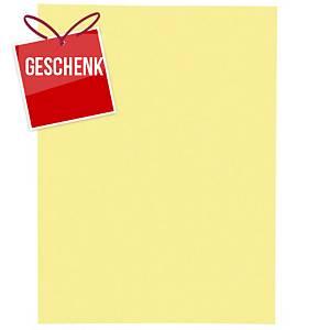Einlagemappe Lyreco für A4 235x315 mm, Karton 220 g/m2, gelb, Pk. à 100 Stk.