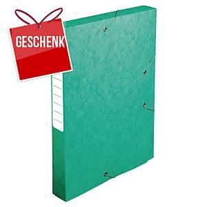 Pendenzenbox Lyreco A4, 40 mm Rücken, Pressspan, grün