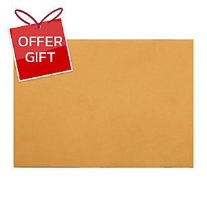 555 GOVERNMENT EXPANDING ENVELOPE KRAFT9 X12.3/4  (C4) 125G BROWN - PACK OF 50