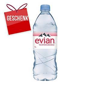 Evian Mineralwasserflasche 1l - Packung à 6 Flaschen