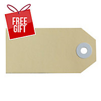 AVERY BUFF SHIPPING LUGGAGE TAGS, SIZE 2, 82X41MM, 1000 TAGS