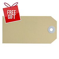 AVERY BUFF SHIPPING LUGGAGE TAGS, SIZE 4, 108X54MM, 1000 TAGS