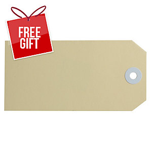 AVERY BUFF SHIPPING LUGGAGE TAGS, SIZE 5, 120X60MM, 1000 TAGS