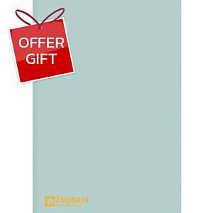 ELEPHANT 405 Plastic Folder A4 Light Blue - Pack of 12