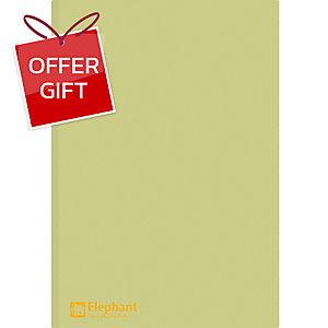 ELEPHANT 405 PLASTIC FOLDER A4 150MU GREEN - PACK OF 12