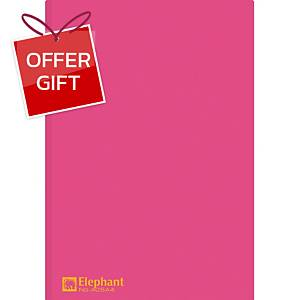ELEPHANT 405 Plastic Folder A4 Red - Pack of 12