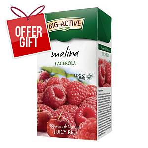 PK20 BIG ACTIVE TEA BAGS RASPBERRY