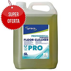 Preparat do gruntownego czyszczenia LYRECO PRO, 5 l