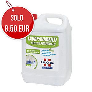 Detergente pavimenti Amuchina neutro profumato 5 L
