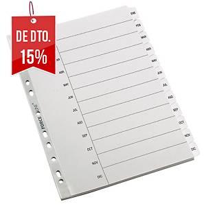 Conjunto separadores janeiro-dezembro Lyreco - A4 - cartão - multifuro
