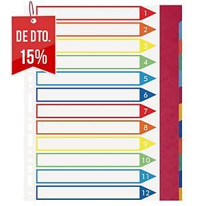 Conjunto 12 separadores com pestanas Exacompta - A4+ - cartolina - sortido