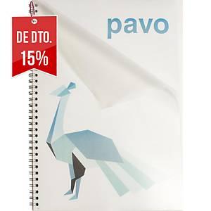 Pack 100 capas de encadernação Pavo - A4 - PE - transparente