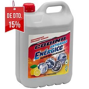 Desengordurante enérgico profissional Codina - 5 L